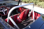 Custom Roll Bar